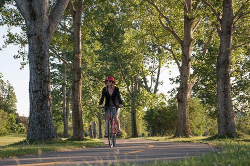 Vélo Parc Beauséjour