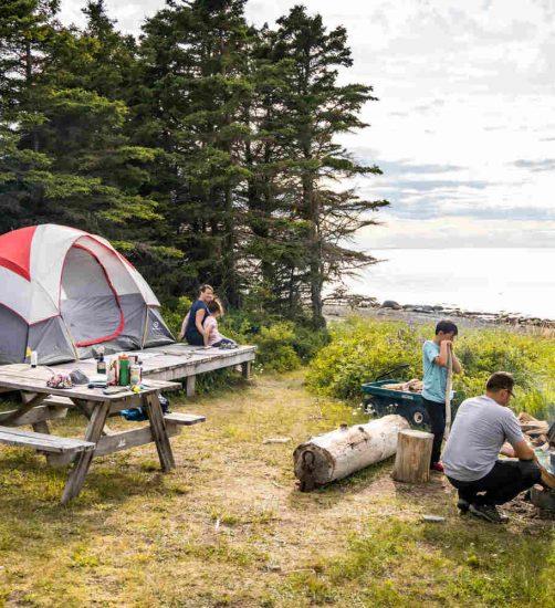 – Camping de l'Île Saint-Barnabé