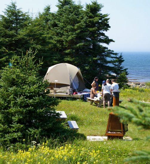 Camping de l'Île Saint-Barnabé – Camping de l'Île Saint-Barnabé